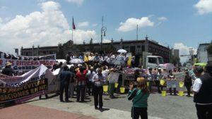 Foxilandia: el país de nunca jamás